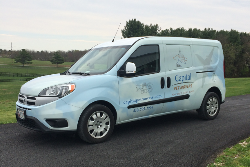 Capital pet movers your pets travel agent pet taxi sciox Gallery